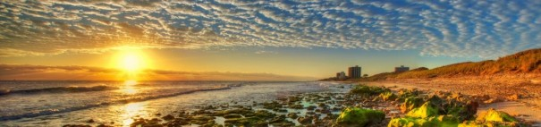cropped-cropped-sunrise-hdr-panoramic-coral-cove-park-beach-rocks-erosion-jupiter-florida.jpg